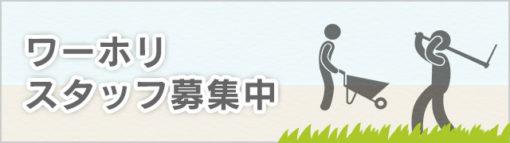 banner-staff